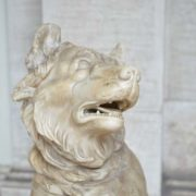 ancient dog, vatican museums
