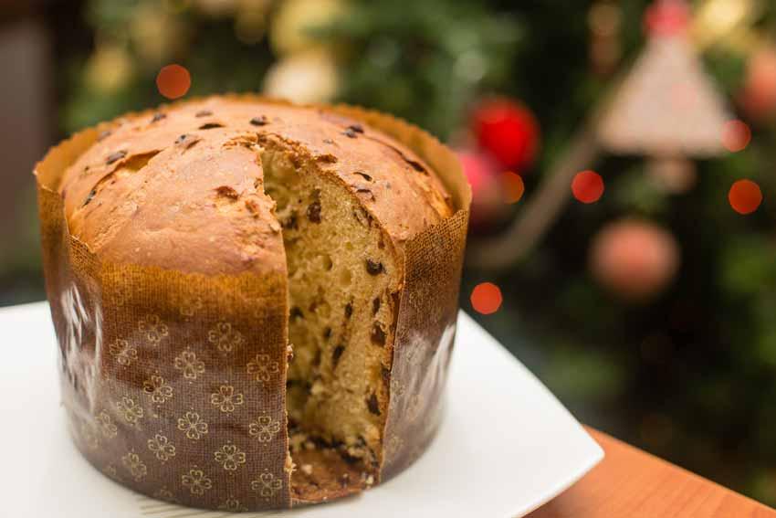 italian Christmas dessert panettone